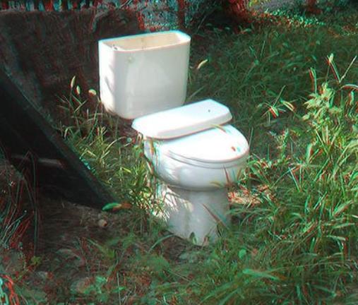 Ce sont des wc dans l'herbe